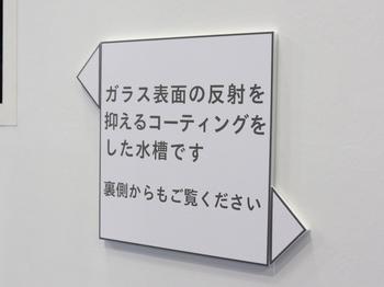 旭硝子.jpg